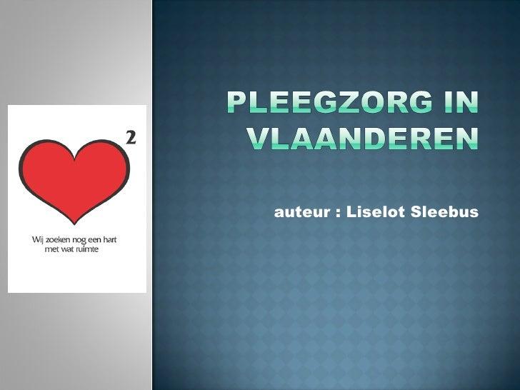 Pleegzorg In Vlaanderen
