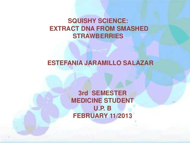 SQUISHY SCIENCE:EXTRACT DNA FROM SMASHED     STRAWBERRIESESTEFANIA JARAMILLO SALAZAR       3rd SEMESTER      MEDICINE STUD...