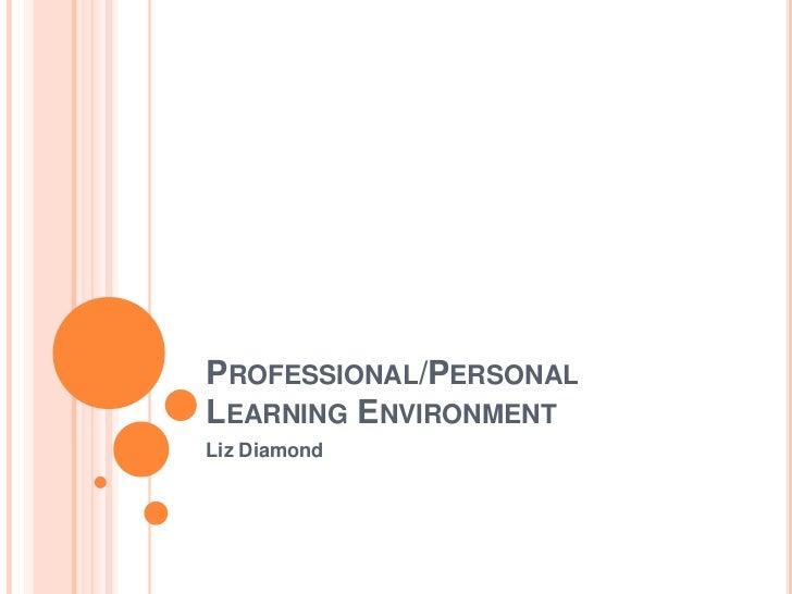 Professional/PersonalLearning Environment<br />Liz Diamond<br />