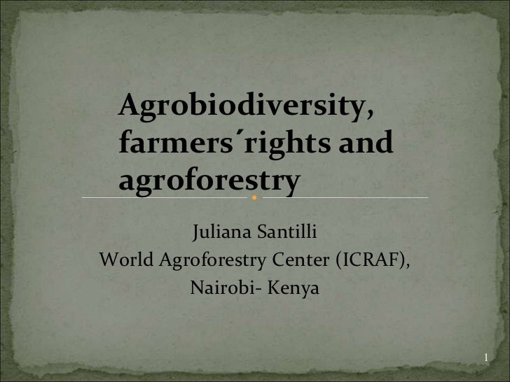 Agrobiodiversity,  farmers´rights and  agroforestry         Juliana SantilliWorld Agroforestry Center (ICRAF),         Nai...