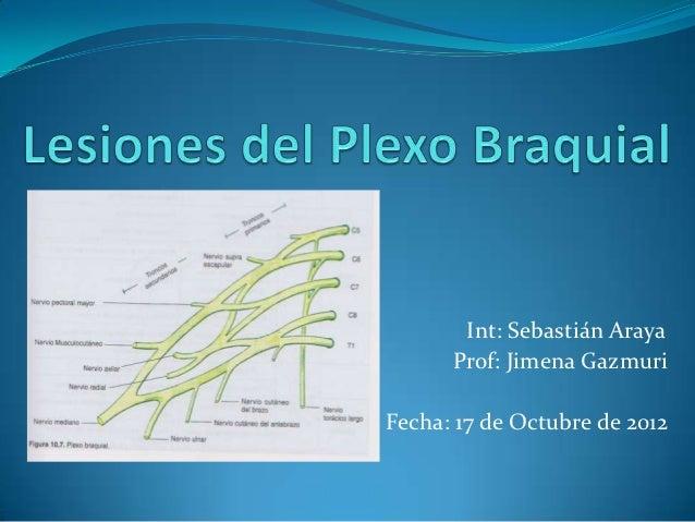 Int: Sebastián Araya      Prof: Jimena GazmuriFecha: 17 de Octubre de 2012