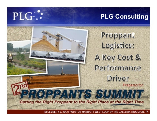 PLG Consulting      Prepared for:                      1