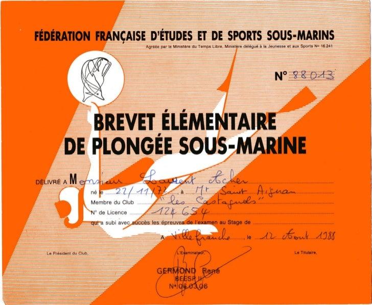 Plonge 1988