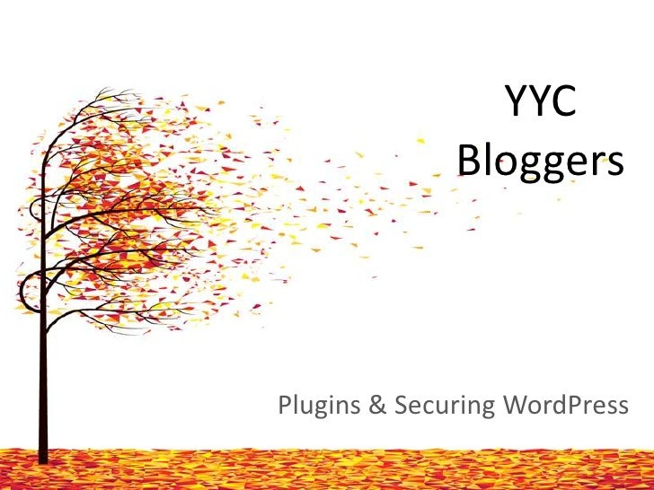 YYC              BloggersPlugins & Securing WordPress