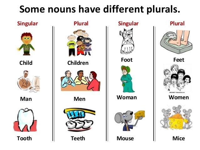 Plural Nouns Regular Irregular - How to make plural words English ...