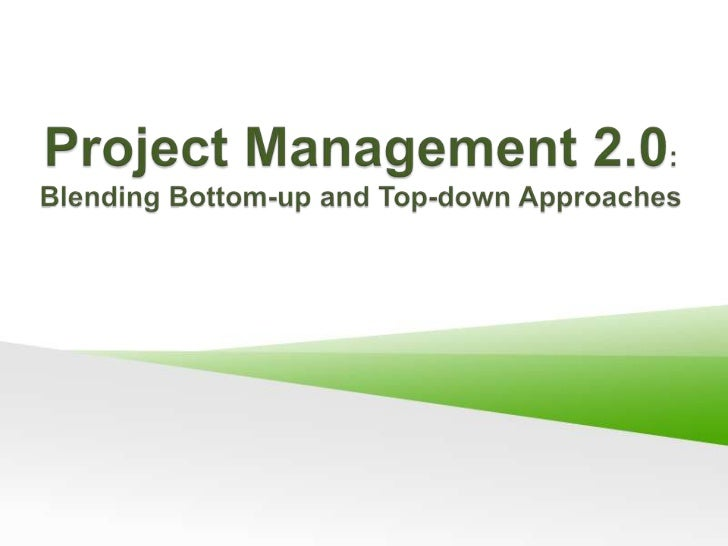 Project Management 2.0: Blending Bottom-up and Top-down Approaches<br />