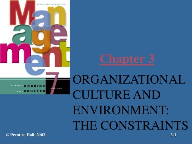 Chapter 3  ORGANIZATIONAL CULTURE AND ENVIRONMENT: THE CONSTRAINTS © Prentice Hall, 2002  3-1