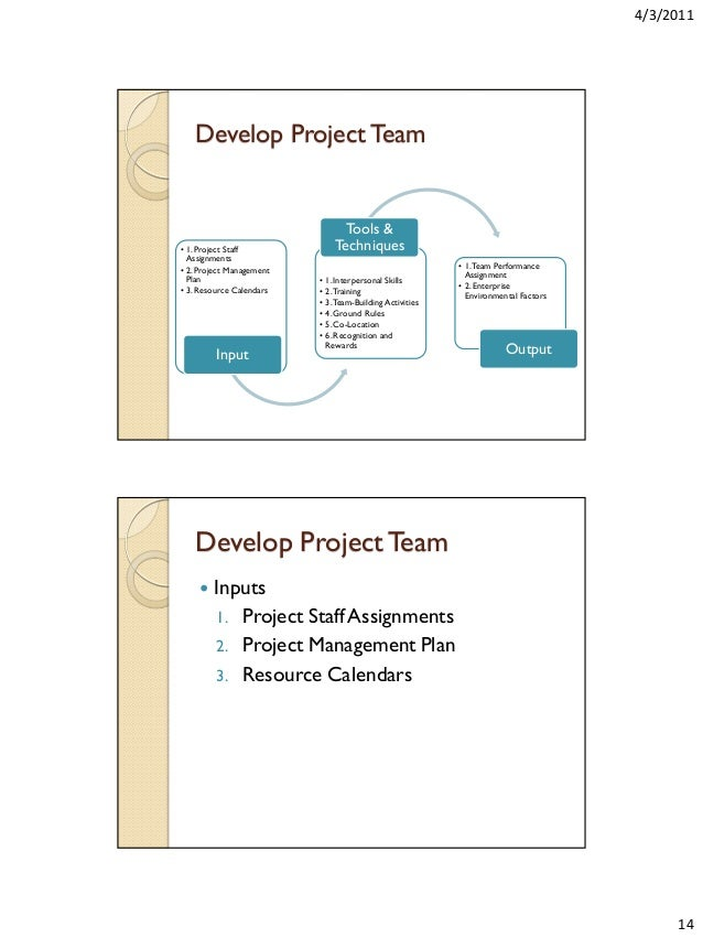 Project Management Thesis