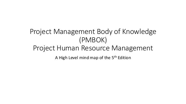 project management body of knowledge 4th edition pdf free