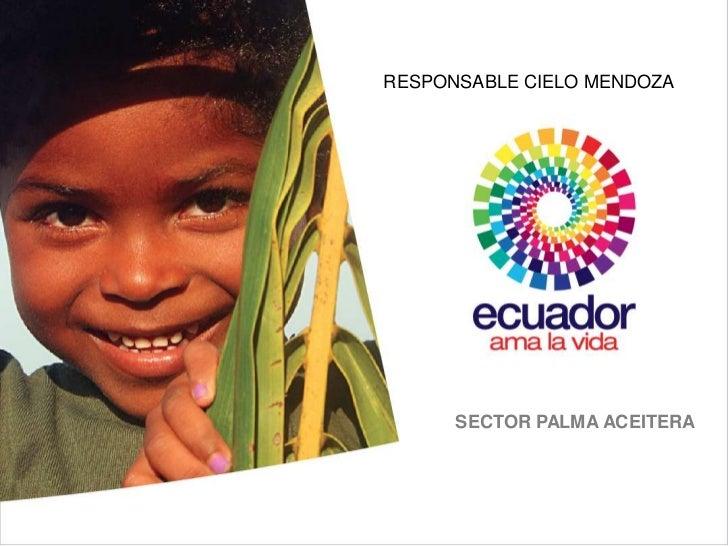 RESPONSABLE CIELO MENDOZA      SECTOR PALMA ACEITERA