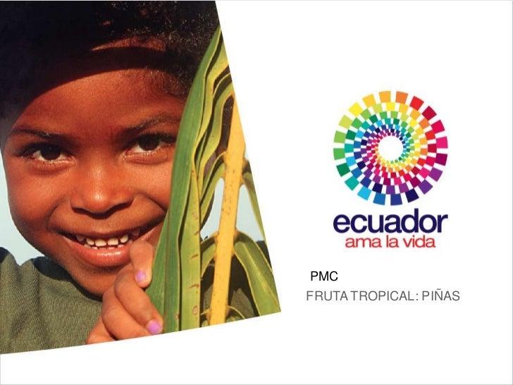 in     PMC     FRUTA TROPICAL: PIÑAS