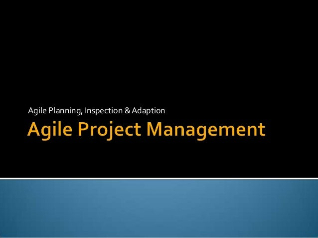 Pmi   agile planning, inspection and adaption