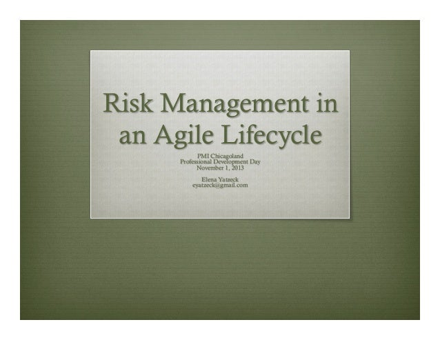 Risk Management in an Agile Lifecycle PMI Chicagoland Professional Development Day November 1, 2013 Elena Yatzeck eyatzeck...