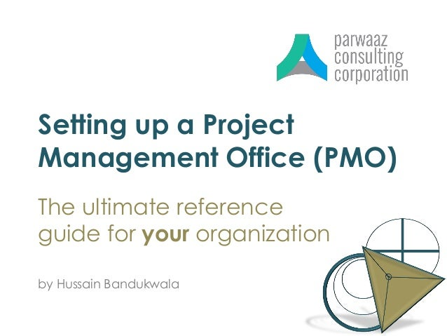 Setting Up A Project Management Office PMO