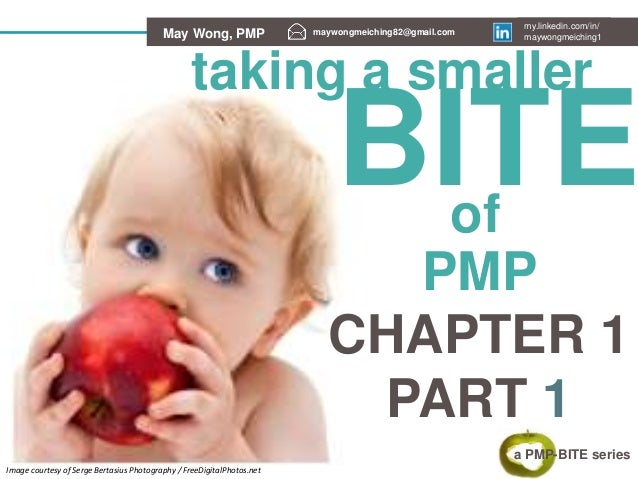 Taking smaller bites with PMP-Bite series - PMP Chapter 1 (the 4Ps)