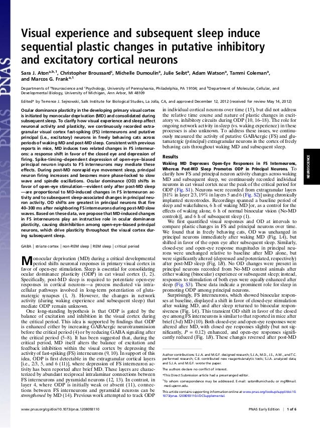Visual experience and subsequent sleep inducesequential plastic changes in putative inhibitoryand excitatory cortical neur...