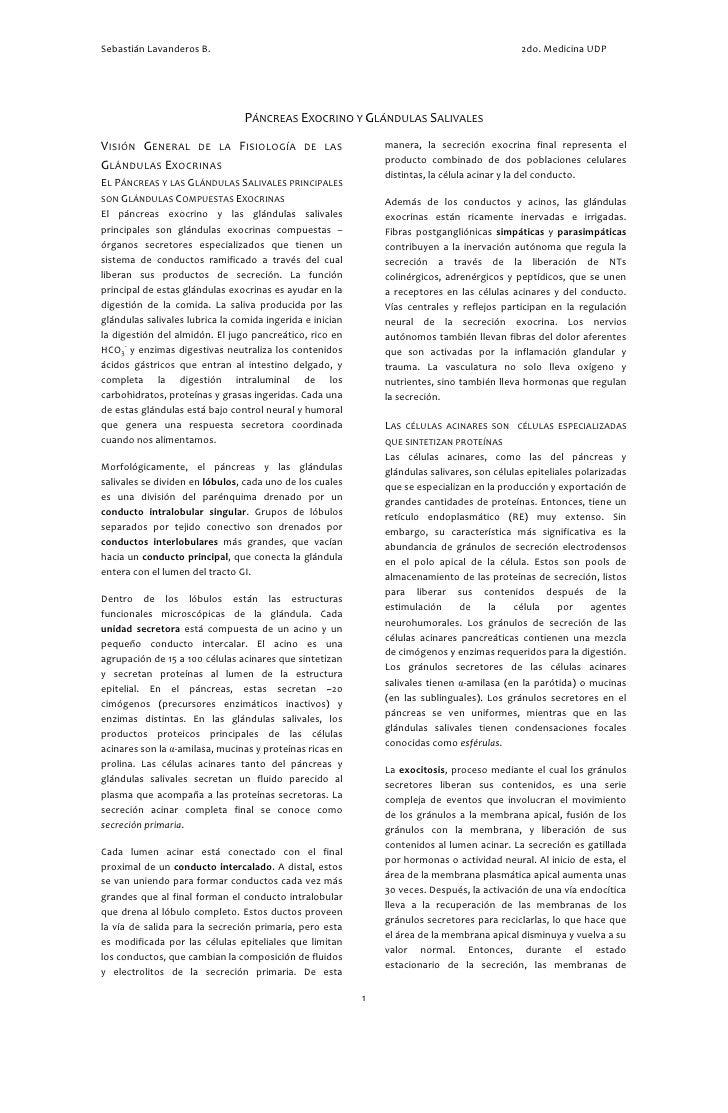 Sebastián Lavanderos B.                                                                       2do. Medicina UDP           ...