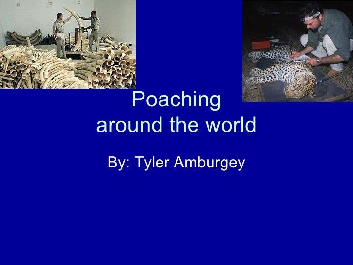 Poachingaround the world By: Tyler Amburgey