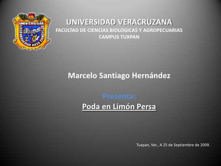 UNIVERSIDAD VERACRUZANA<br />FACULTAD DE CIENCIAS BIOLOGICAS Y AGROPECUARIAS<br />CAMPUS TUXPAN<br />Marcelo Santiago Hern...