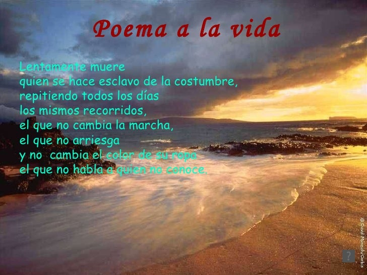 poemas de la vida