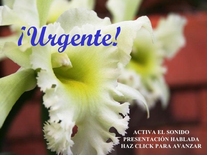Poema Urgente...