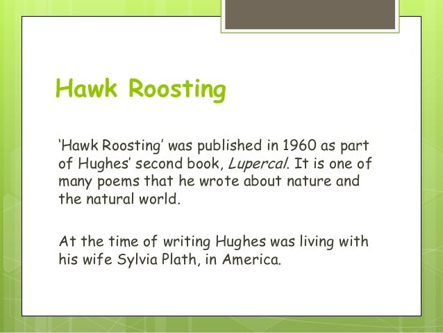 """hawk roosting poem essay Hawk roosting the poem """"hawk roosting"""" written by ted hughes is presented as a dramatic monologue, in which the hawk is the speaker it is an individual utterance, where the hawk starts the poem with the pronoun """"i."""