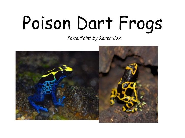 Poison Dart Frogs PowerPoint by Karen Cox