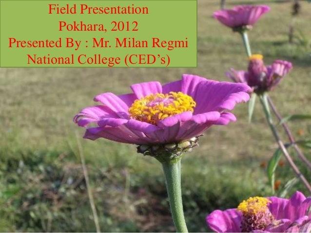 Field Presentation         Pokhara, 2012Presented By : Mr. Milan Regmi   National College (CED's) 1/14/2013            Reg...