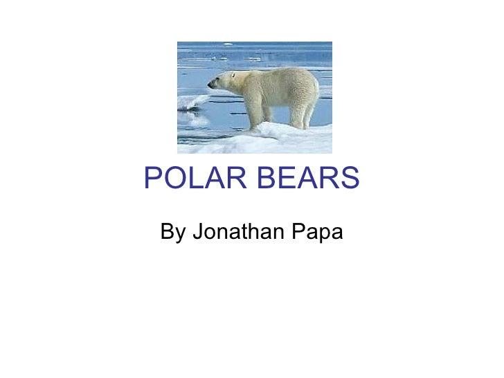 POLAR BEARS By Jonathan Papa
