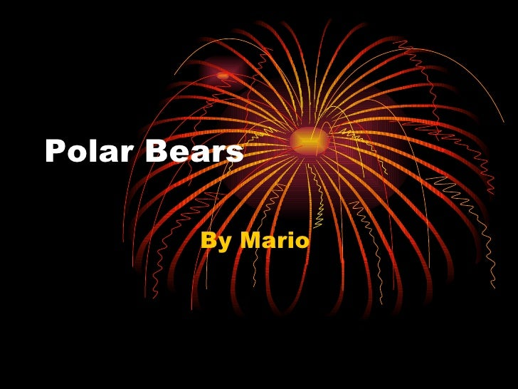 Polar Bears  By Mario