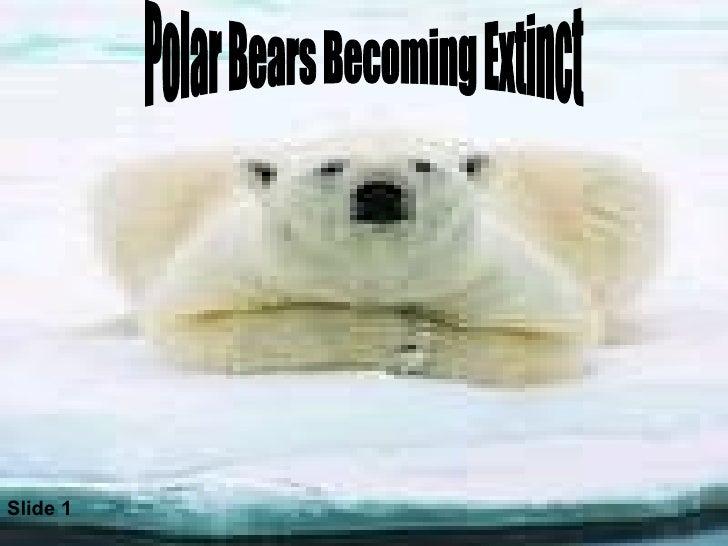 Polar Bears Becoming Extinct Slide 1