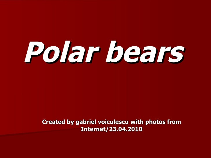 Polar bears Created by gabriel voiculescu with photos from Internet/23.04.2010