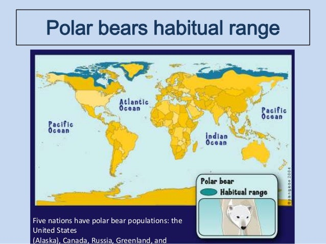 polar bears habitat map. Black Bedroom Furniture Sets. Home Design Ideas