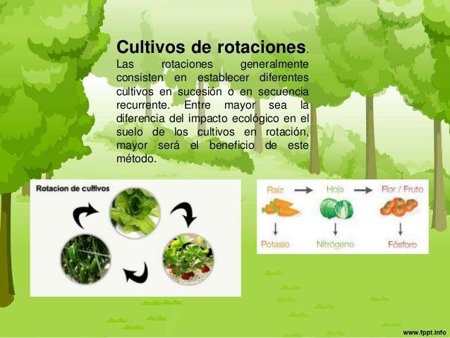 Policultivos presentacion for Rotacion cultivos agricultura ecologica