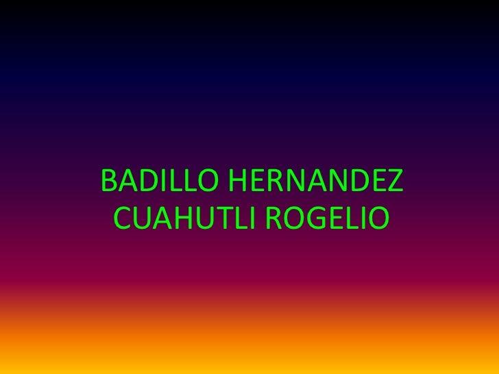 BADILLO HERNANDEZ CUAHUTLI ROGELIO<br />