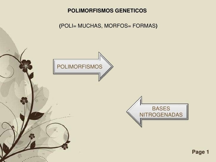 POLIMORFISMOS GENETICOS(POLI= MUCHAS, MORFOS= FORMAS)POLIMORFISMOS                                BASES                   ...