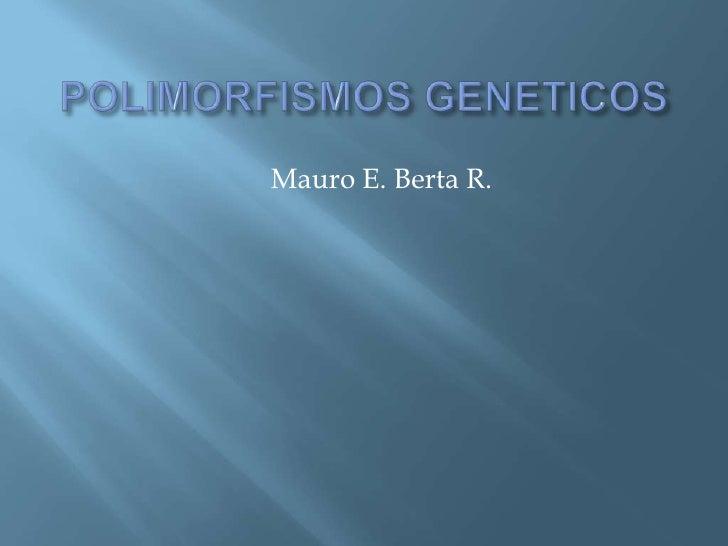 Mauro E. Berta R.