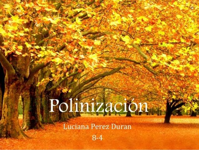 Polinización Luciana Perez Duran 8-4
