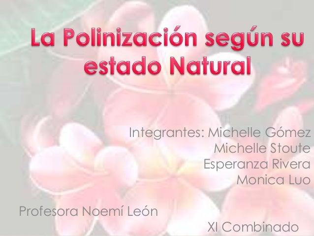 Integrantes: Michelle Gómez Michelle Stoute Esperanza Rivera Monica Luo Profesora Noemí León XI Combinado