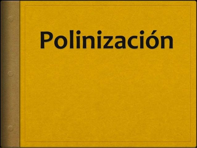 ¿Cuáles son algunas adaptaciones para la polinización y la dispersión de semillas? o La coevolución pone en contacto a pla...