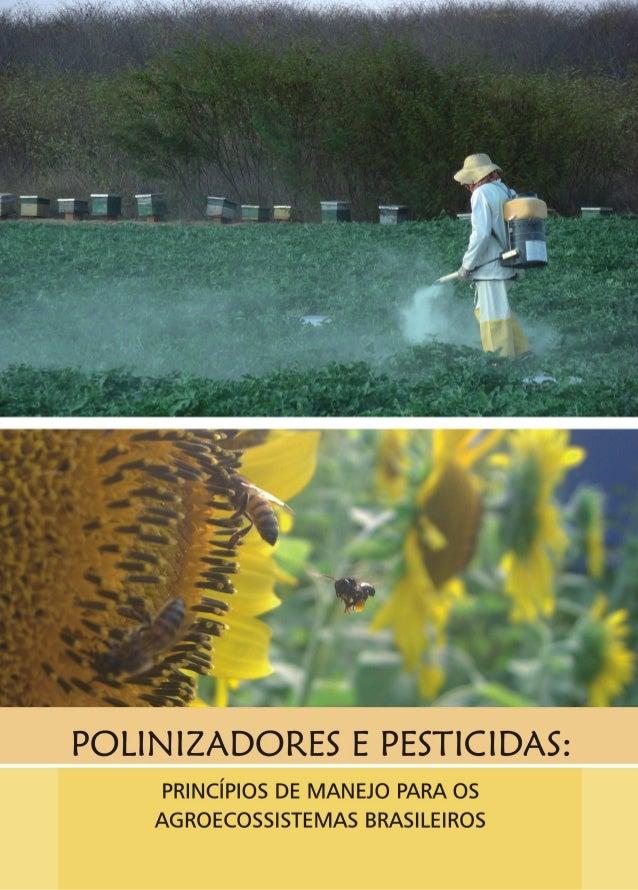 Polinizadores e pesticidas