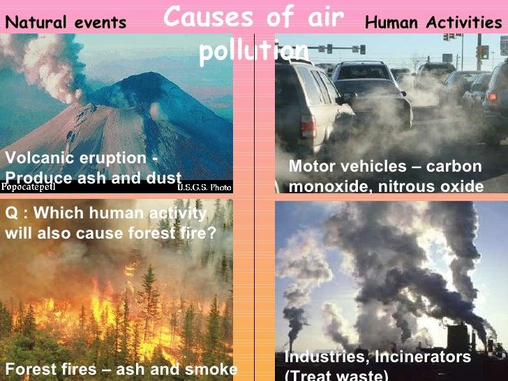 essay cars pollution