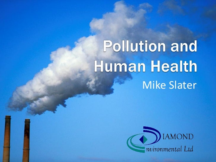 Essay Environmental Pollution