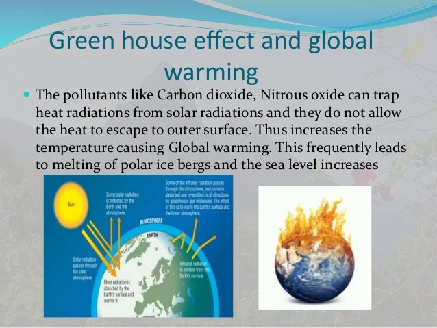 Environmental effects of global warming essay