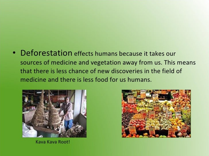 cause effect solution to deforestation Wood for good: solutions for deforestation-free wood products looks at how   on deforestation and reviews the economics and environmental impacts of the   trees absorb and store carbon as they grow, and clearing forests causes the.