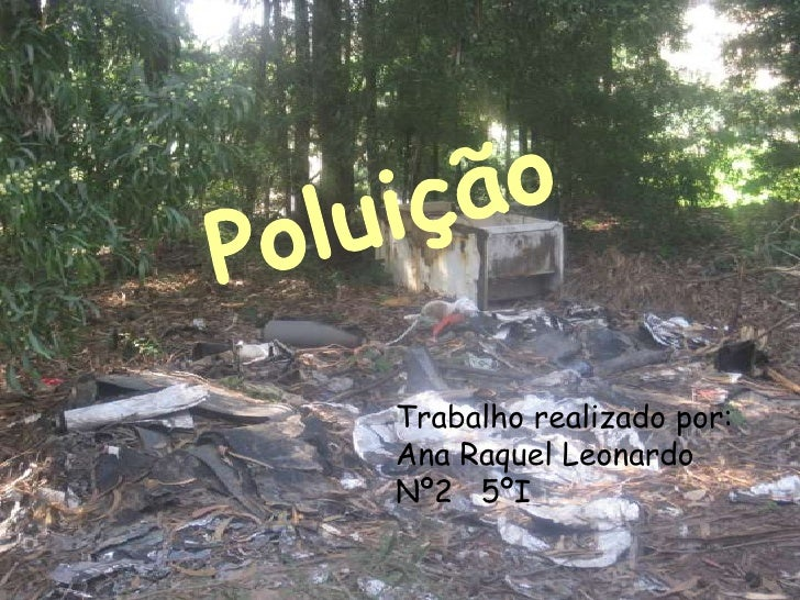 Trabalho realizado por:Ana Raquel LeonardoNº2 5ºI