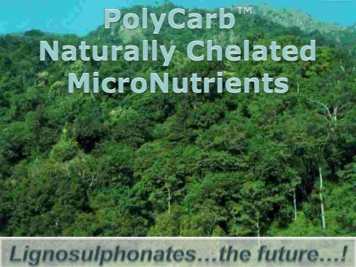 Our featured product - PolyCarb