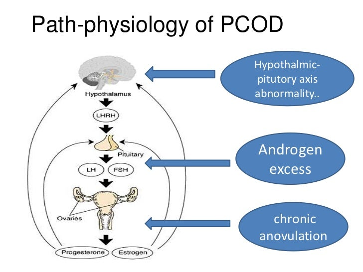 an introduction to the issue of polycystic ovarian syndrome pcos Pcos and ovarian cysts realize that women with polycystic ovarian syndrome (pcos) on this website is required to address the issues presented by.