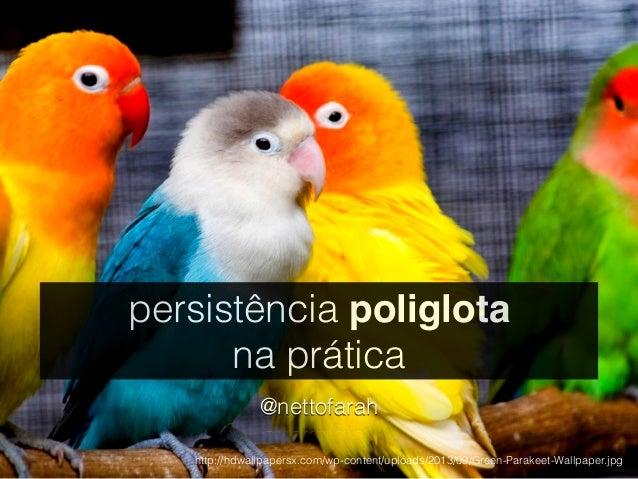 persistência poliglota  na prática  @nettofarah  http://hdwallpapersx.com/wp-content/uploads/2013/09/Green-Parakeet-Wallpa...