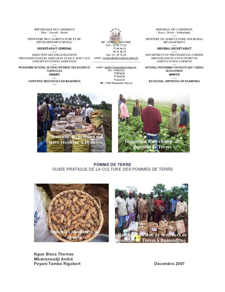 Guide pratique de la culture des pommes de terre (PNDRT)